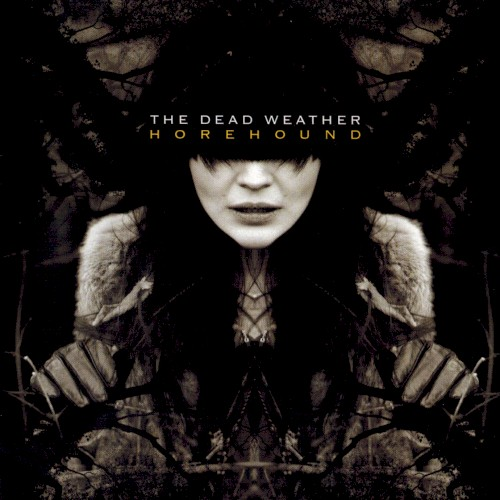 The Dead Weather - Treat Me Like Your Mother (Diplo Remix)